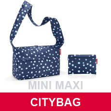 travelling_citybag